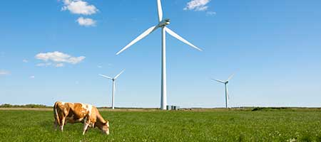 Wind energy consulting